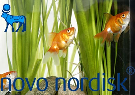 novo_nordick_reference
