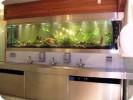 Akvarie indbygget i væg :: Akvariets bagbeklædning virker som et spejl, og toilettet fremstår spændende og smukt