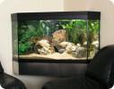 Hjørneakvarie :: Akvariet er sat op, så det hænger flot mellem to sofaer